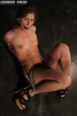 Perfect Slave - Legendary Slave - Ariel X