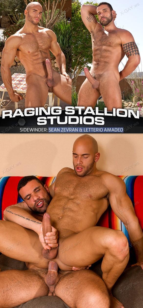 RagingStallion: Sidewinder (Sean Zevran, Letterio Amadeo)
