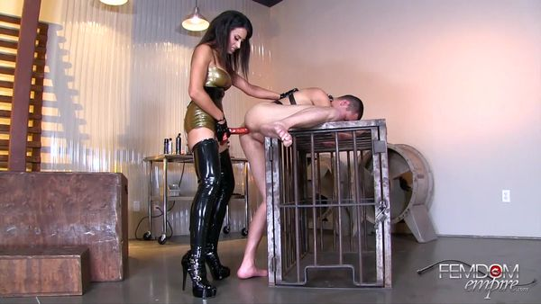FemdomEmpire - Tangent - Pumped Full of Dick