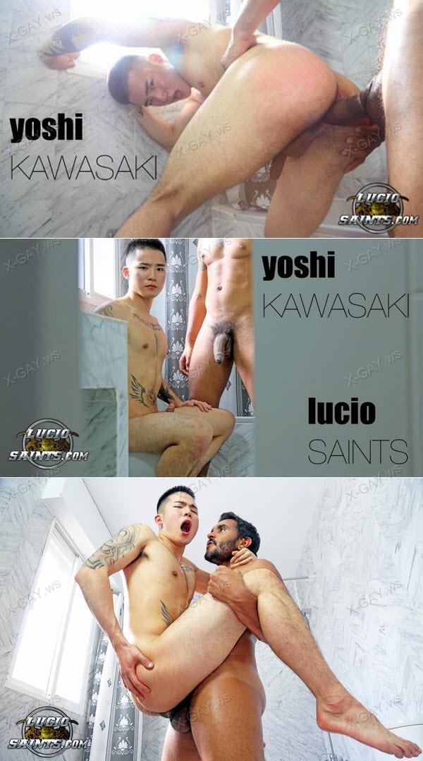 luciosaints_yoshikawasaki_luciosaints.jpg