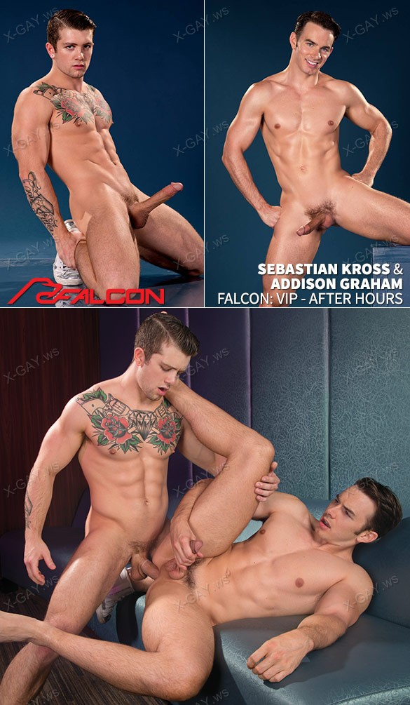 FalconStudios: Vip, After Hours (Sebastian Kross, Addison Graham)
