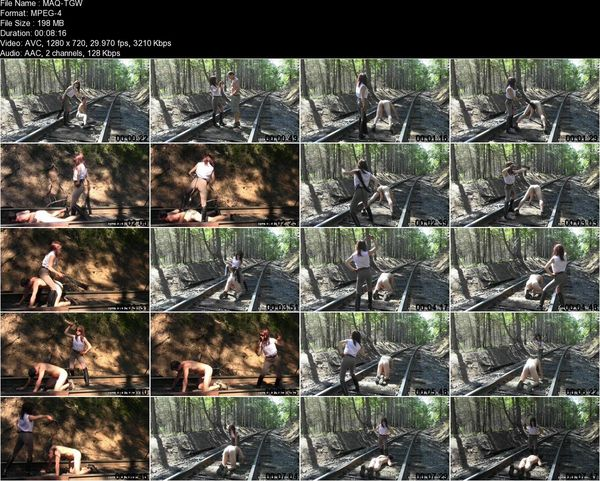 SyrenProductions - Mistress Aleana's Queendom - Trespasser Gets Whipped