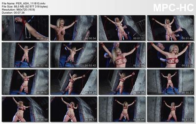Perfect Slave - Strange Sensations - Ashley Winters