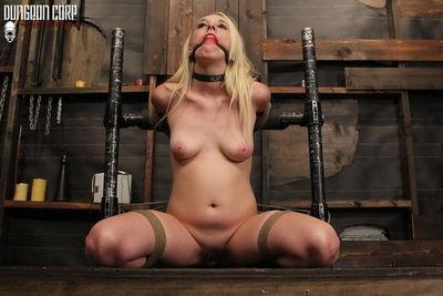 Society SM - Roxy Needs Punishment - Roxy Nicole