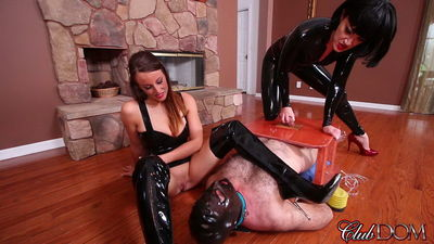 Clubdom - Cock Stomping Box