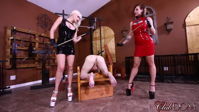 Clubdom - Dahila Rain & Harlow Punish Him Like A Dog