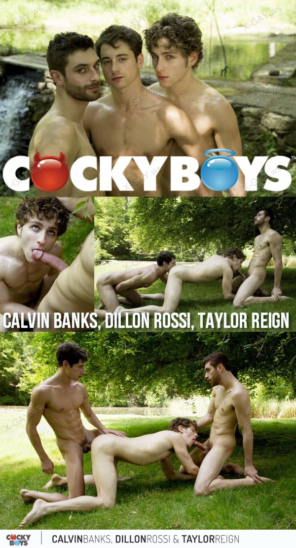 CockyBoys: Summer Sex with Calvin Banks, Dillon Rossi and Taylor Reign