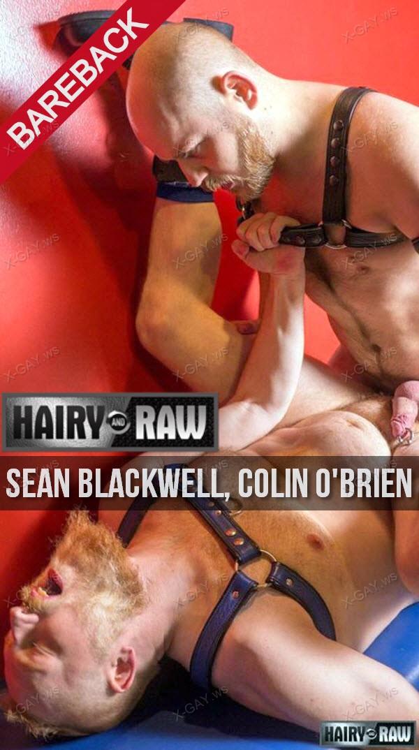 HairyAndRaw: Sean Blackwell, Colin O'Brien (Bareback)
