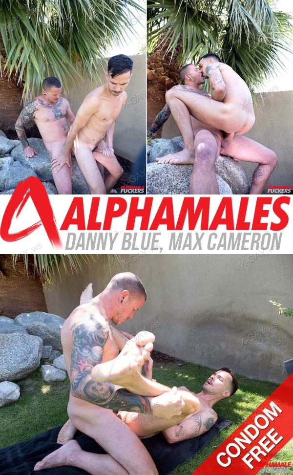Alphamales: Danny Blue, Max Cameron (Bareback)