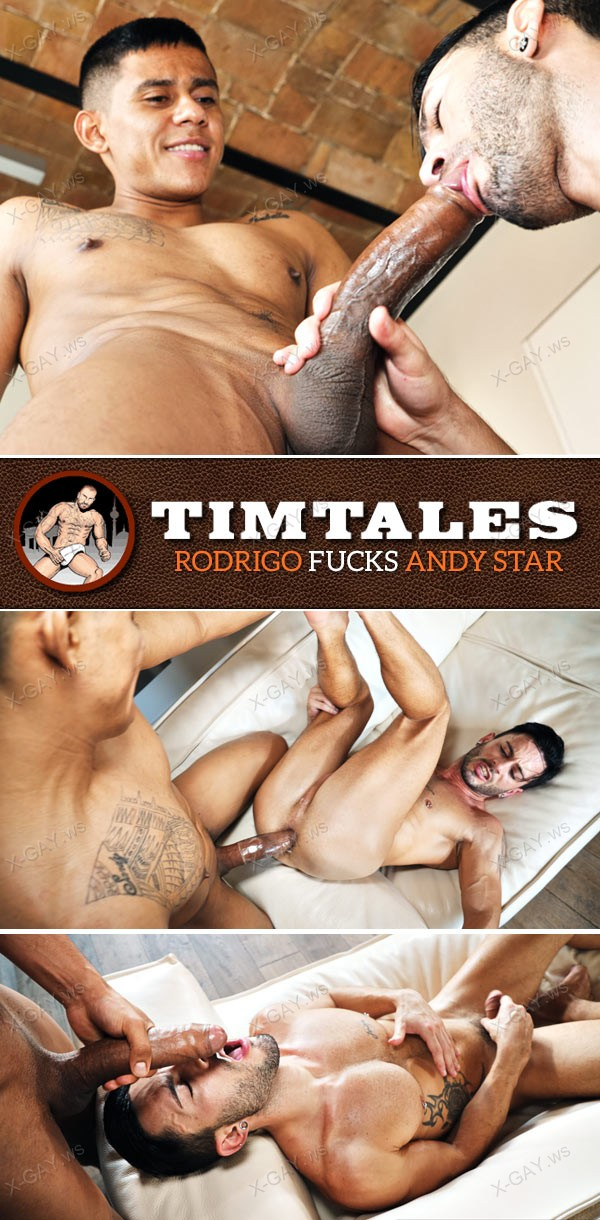 timtales