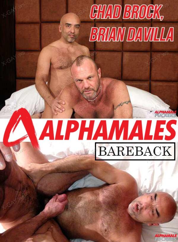 Alphamales: Chad Brock, Brian Davilla