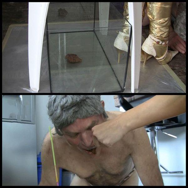 Der Toilettensklave wird geffuttert