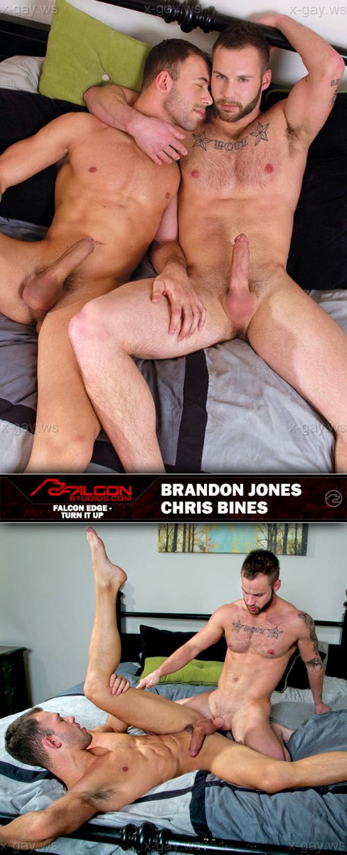 FalconStudios – Brandon Jones & Chris Bines