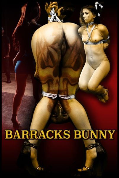 (30.09.2015) Barracks Bunny