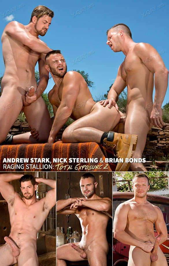ragingstallion_totalexposure2_andrewbriannick.jpg