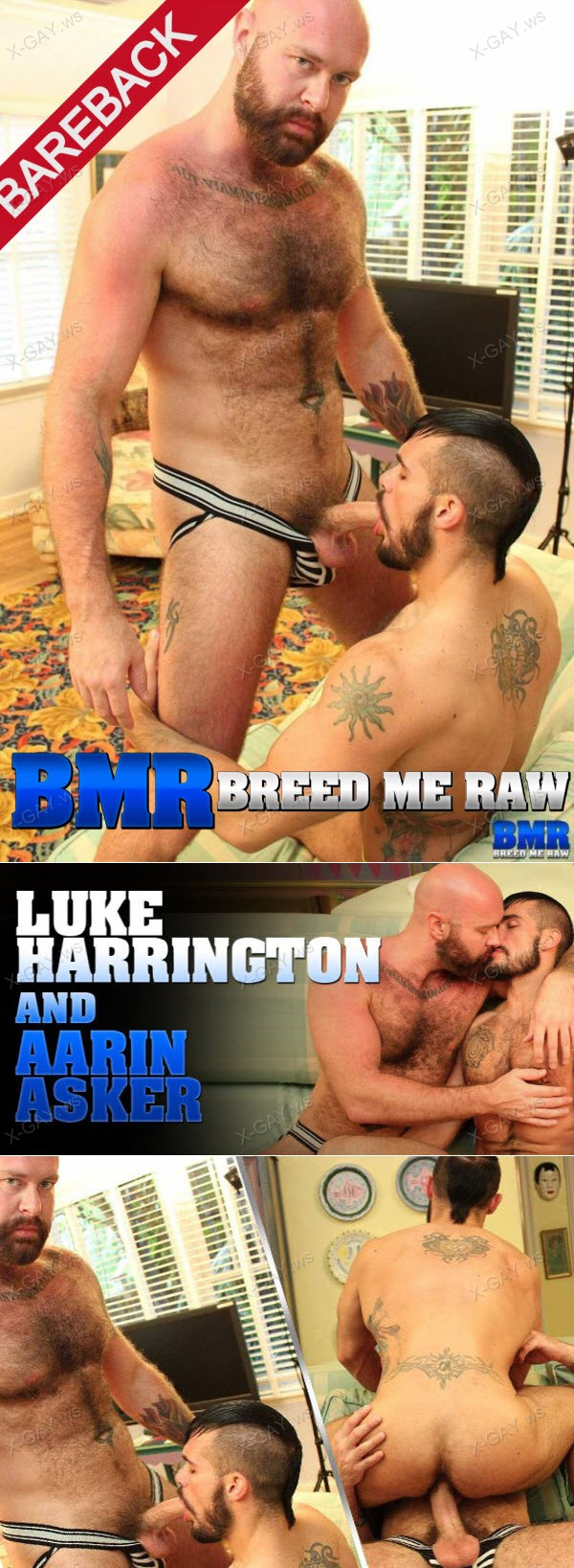 BreedMeRaw: Luke Harrington, Aarin Asker (Bareback)