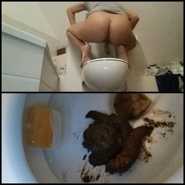 You need a job I need new toilets