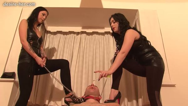 Desire-Her - Training The Dog Part 2