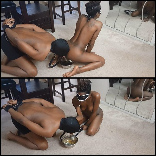 (10.01.2016) DOGGY BOWL SCAT SLAVE