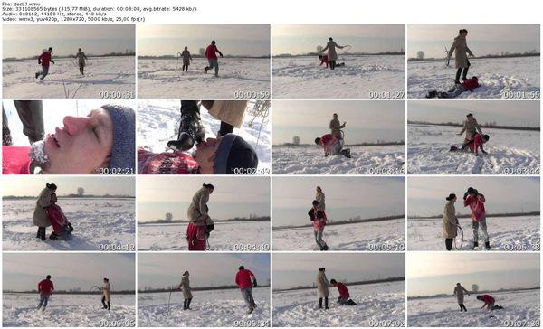 Lady-Jenny - Lady Jenny - Desmond in the Snow