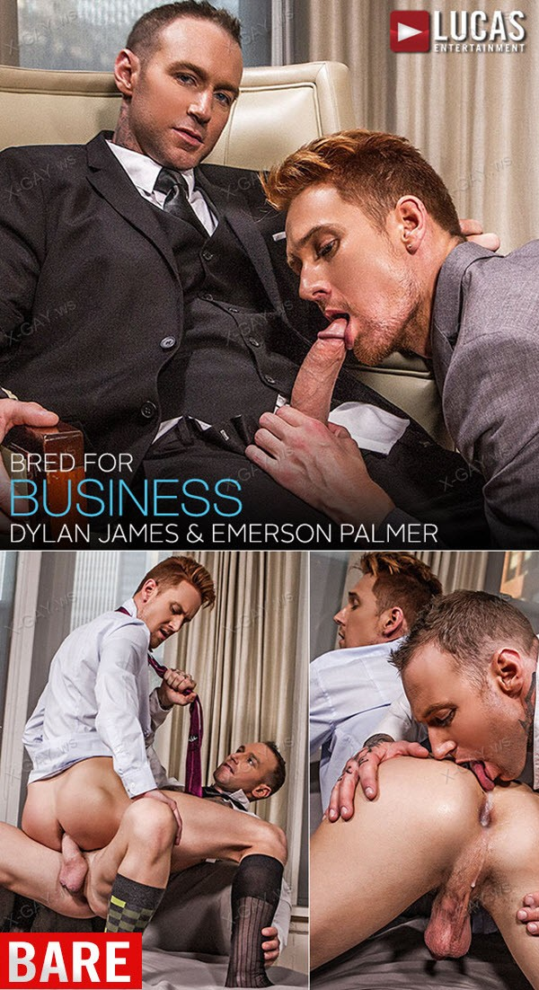 LucasEntertainment: Gentlemen 18: Bred for Business (Dylan James, Emerson Palmer) (Bareback)