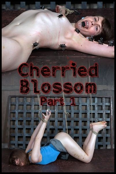 (15.02.2017) Cherried Blossom Part 1