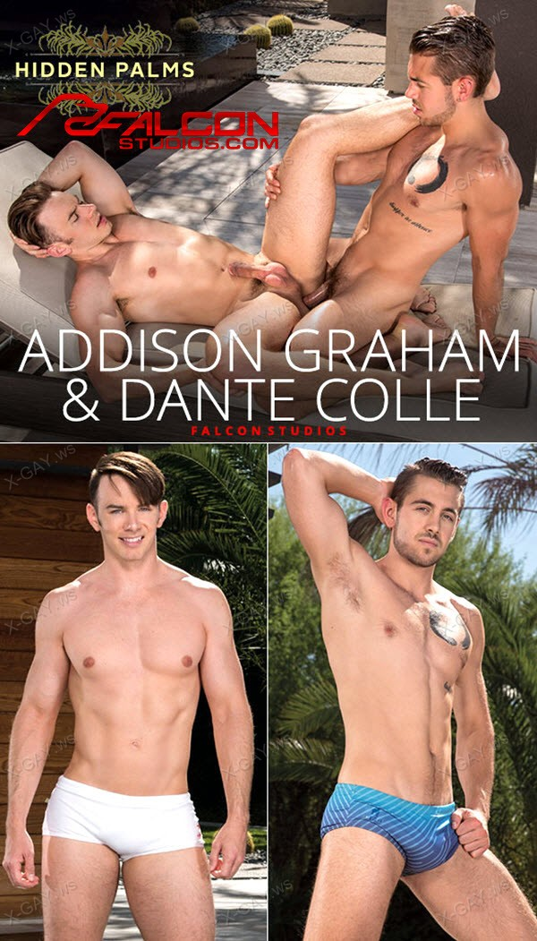 FalconStudios: Addison Graham, Dante Colle: Hidden Palms