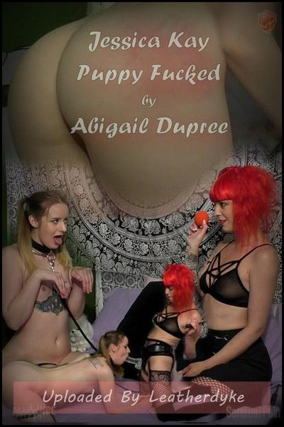 Jessica Kay Puppy Fucked by Abigail Dupree | Full HD 1080p | Release Year: July 01, 2018