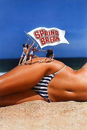 dssx70782yt8 Spring Break (1983)