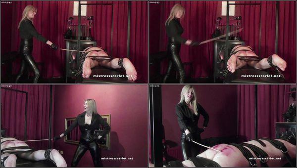 Watch Me Punish My Boy [FetishManiaOrg] Domina Scarlet (1.38 GB)