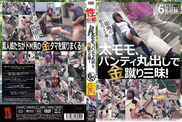 Cover JAV Ballbusting – LZJS-851 – Ultra Cute Girls On The Street Flash Their Thighs And Panties When Kicking Us In The Balls!