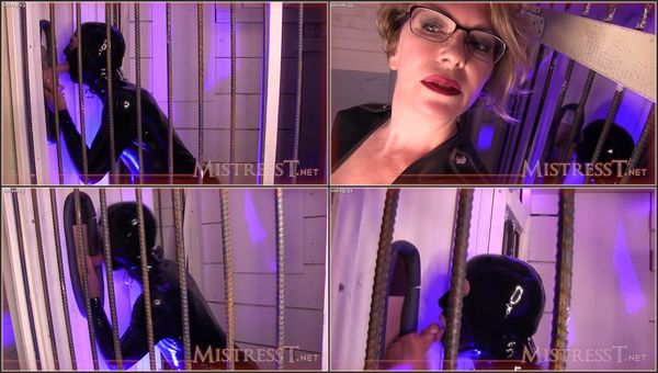 Double Glory Hole Cock Sucking [FetishManiaOrg] Mistress T (513 MB)