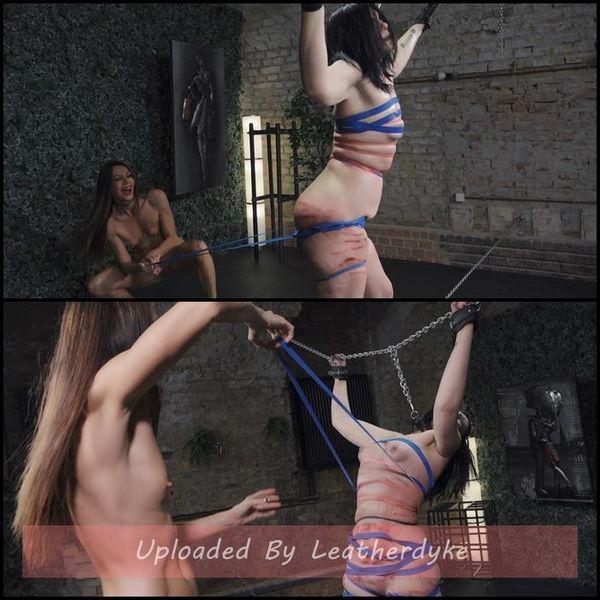 Harp - Abby - Abby, QS