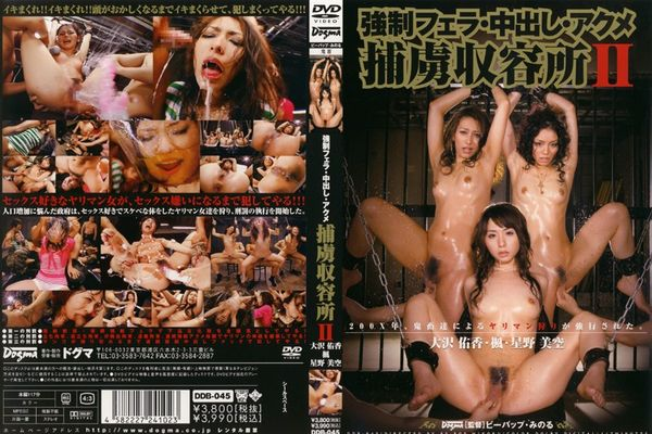 DDB-045 Forced Blowjob And Creampie - Akira Eri (1.34 GB)